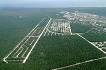 Lots and Land for Sale in DOWNTOWN, Tulum, Quintana Roo $30,000