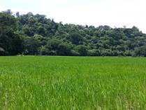 Lots and Land for Sale in Dominical, Puntarenas $3,133,196