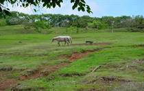 Lots and Land for Sale in Dominical, Puntarenas $259,000