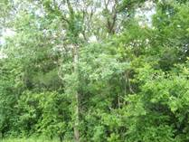 Lots and Land for Sale in San Bernard River, Brazoria,TX, Texas $10,000