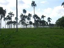 Lots and Land for Sale in Las Canas, Puerto Plata $3,950,000