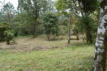 Lots and Land for Sale in Altos Del Maria, Panamá, Panamá $91,000