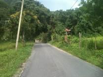 Lots and Land for Sale in Garzas, Adjuntas, Puerto Rico $215,000