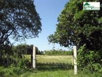 Homes for Sale in Benque Viejo Town, Cayo, Cayo $60,000