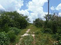 Lots and Land for Sale in Conkal, Merida, Yucatan $48,000