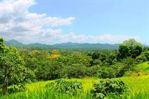Lots and Land for Sale in Ojochal, Puntarenas $24,000