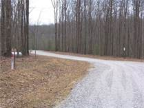 Lots and Land for Sale in Spruce Creek, Jamestown, Tennessee $80,000