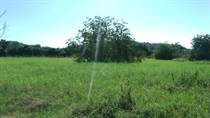Lots and Land for Sale in Jaco, Garabito, Puntarenas $30,000