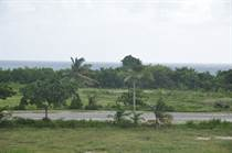 Lots and Land for Sale in Cap Cana, La Altagracia $299,000