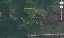 Lots and Land for Sale in Belmopan, Cayo $155,000