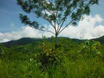 Lots and Land for Sale in San Buenaventura, Ojochal, Puntarenas $35,000