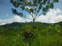 Lots and Land for Sale in San Buenaventura, Ojochal, Puntarenas $35,000