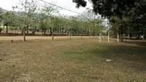 Lots and Land for Sale in La Fortuna , San Carlos, Alajuela $69,000