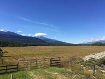 Lots and Land for Sale in Valemount, British Columbia $140,000
