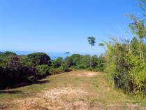 Farms and Acreages for Sale in Dominicalito, Dominical, Puntarenas $1,100,000