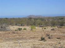 Lots and Land for Sale in El Campamento, Baja California Sur $10,000