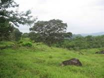 Lots and Land for Sale in Bejuco, Panamá, Panamá $990,000