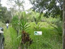 Lots and Land for Sale in Benque Viejo Town, Cayo District, Cayo $101,200
