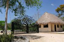 Lots and Land for Sale in Tulum, Quintana Roo $100,000