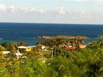 Homes for Sale in Peñon Brusi Beach, Camuy, Puerto Rico $69,000