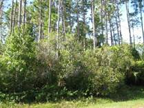 Homes for Sale in Indian Trails, Palm Coast, Florida $19,999