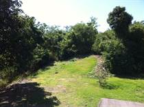 Lots and Land for Sale in La Loma, [Not Specified], Puerto Rico $150,000