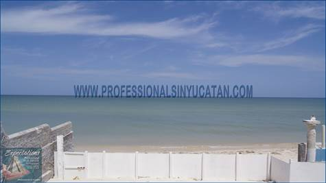 Home for Rent/Lease in Chuburna, Chuburna Puerto, Yucatan $375 monthly