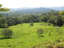 Farms and Acreages for Sale in Platanillo, Dominical, Puntarenas $468,000