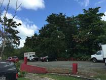 Lots and Land for Sale in San Patricio, San Juan, Puerto Rico $1,100,000