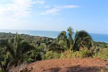 Lots and Land for Sale in Guapil, Dominical, Puntarenas $347,000