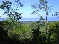 Lots and Land for Sale in Dominical, Puntarenas $195,000
