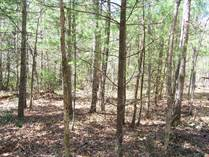 Lots and Land for Sale in Spruce Creek, Jamestown, Tennessee $50,000