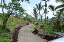 Lots and Land for Sale in Las Terrenas, Samaná $110,000