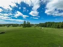 Homes for Sale in Gull Lake, Alberta $518,500