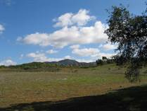 Farms and Acreages for Sale in Valle de Guadalupe, Ensenada, Baja California $1,875,000