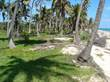 Lots and Land for Sale in Costa Maya, Mahahual, Quintana Roo $89,000