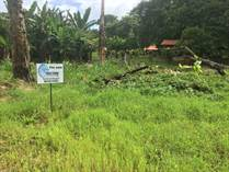 Lots and Land for Sale in Bahia Ballena , Puntarenas $44,900