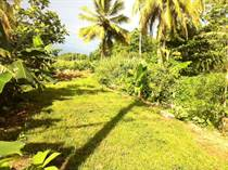 Lots and Land for Sale in Bo.El Mani, Mayaguez, Puerto Rico $20,000