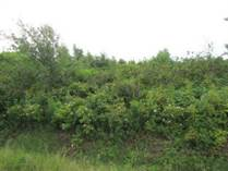 Lots and Land for Sale in Murray Harbour, Prince Edward Island $8,900