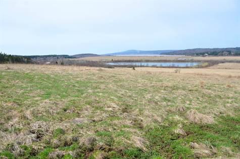 cape rd and dorchester island rd 10361