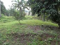 Lots and Land for Sale in Quepos, Puntarenas $30,000
