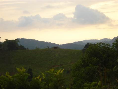 11.8 ACRES - Acreage With 1 Bedroom House, Ocean And Mountain Views Plus River!!!!