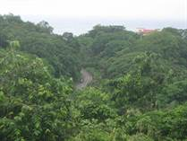 Lots and Land for Sale in Nosara, Guanacaste $150,000