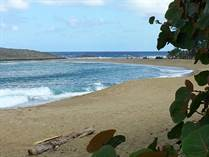 Condos for Rent/Lease in Islabela Beach Resort, Isabela, Puerto Rico $1,100 monthly