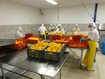 INCREDIBLE INDUSTRIAL FOOD OPERATION IN NORTHERN COSTA RICA Aguas Zarcas / San Carlos