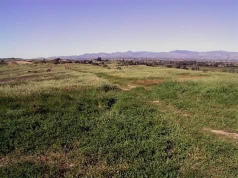 Regency Hills Views