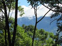 Lots and Land for Sale in Dominical, Puntarenas $79,000