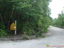Lots and Land for Sale in Pueblo Nuevo, CARIBBEAN ISLANDS, Quintana Roo $18,000