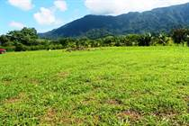 Lots and Land Sold in Ojochal, Puntarenas $29,000