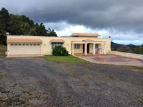 Homes for Sale in Bo. San Patricio, Ponce, Puerto Rico $650,000